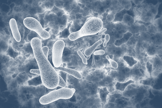 Schadelijke bacteriegroei in harscilinder